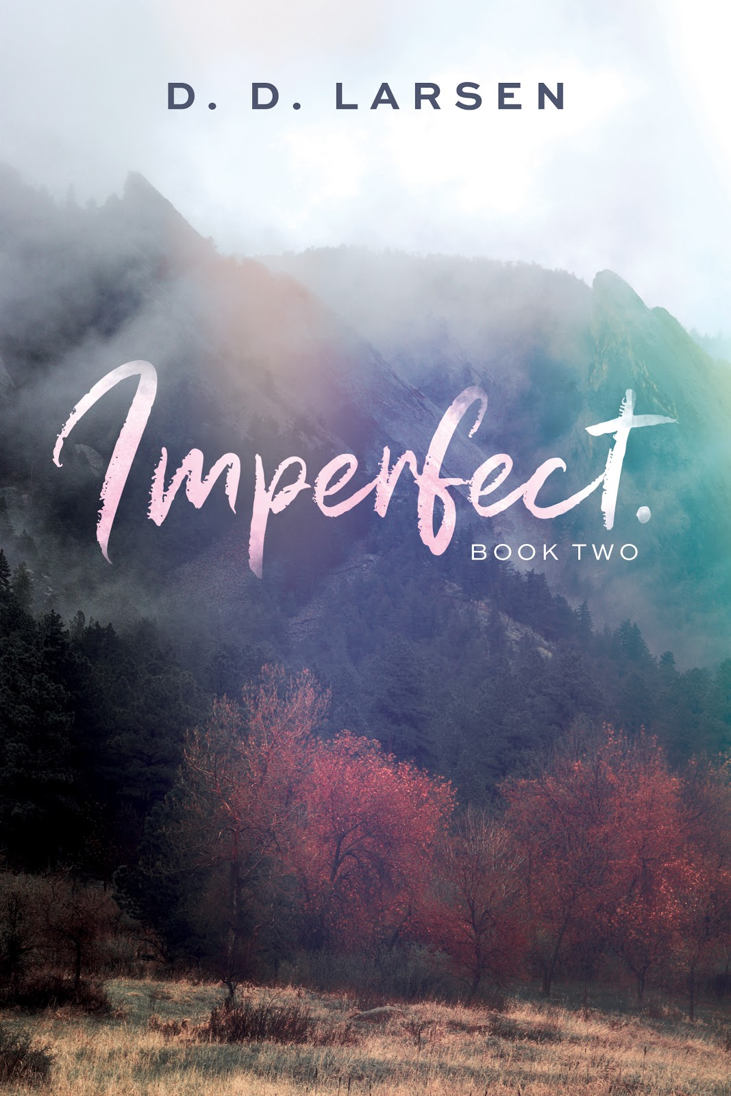 REVIEW: Imperfect by D.D. Larsen